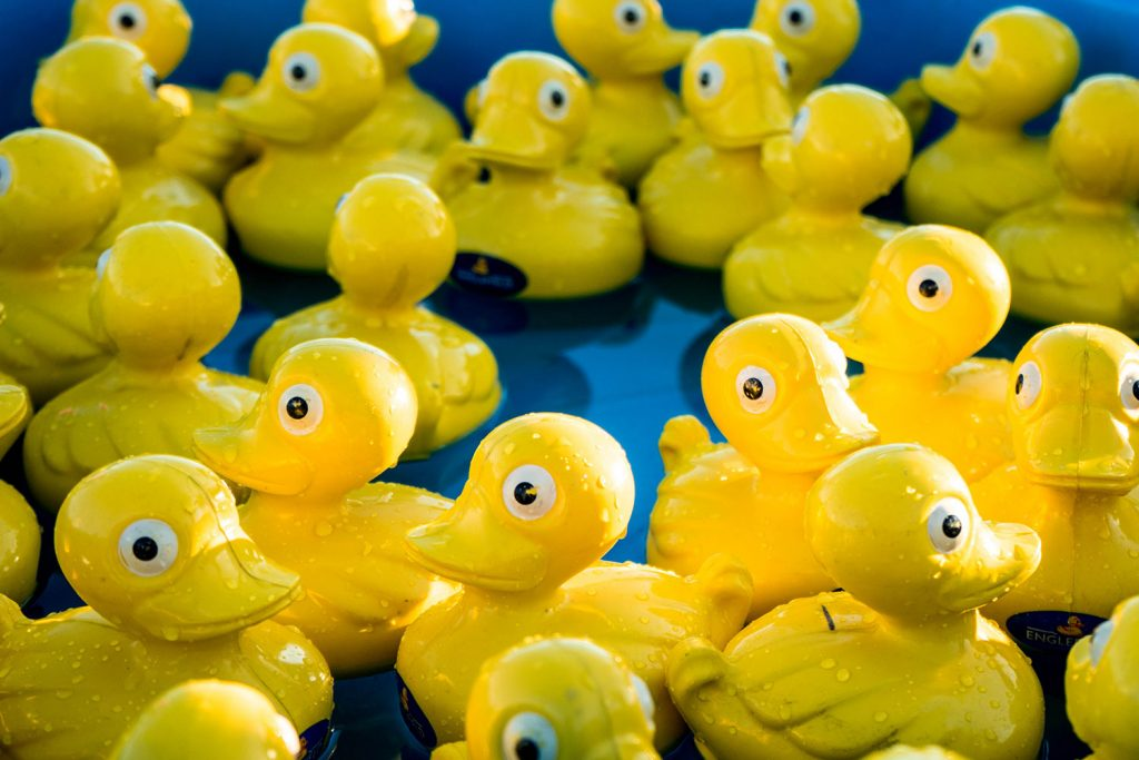 Yellow rubber ducks in a blue tub